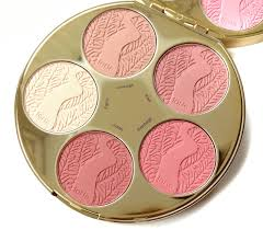 Pink Color Wheel by Tarte Color Wheel Blush Palette First Impressions The Budget