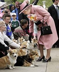 queen elizabeth dog queen s corgis nearly kill princess beatrice s dog teddyhilton com