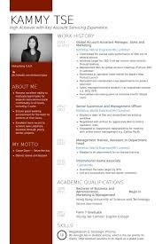 account assistant resume samples visualcv resume samples database
