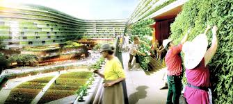 imagining a sustainable singapore for the future opinion news