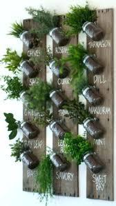 indoor herb garden wall edible walls indoor wall herb garden living walls herbs indoor herb