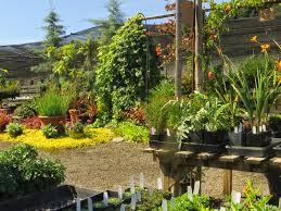 native plant nursery portland oregon chickadee gardens garden blogger u0027s fling portland joy creek nursery