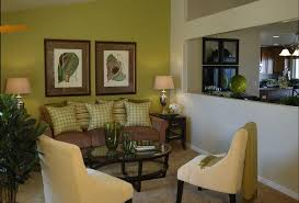 joy of decor green walls brown sofa perfect for small spaces