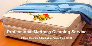 Upholstery Shampoo For Mattress Eco Cleaning Ny Cleaning Company In New York Eco Cleaning