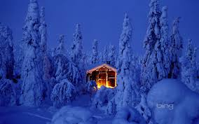 new year christmas spruce christmas tree forest snow snow house