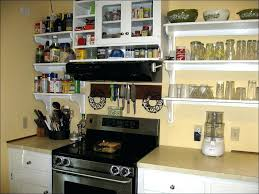 articles with kitchen cabinet plastic shelf supports tag natural