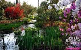 norfolk botanical gardens christmas lights 2017 norfolk botanical garden norfolk va living new deal