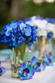 Blue Orchid Flower - purple and blue orchid flowers stem nylon flowers flower plant