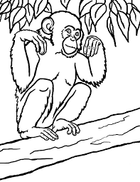 printable monkey coloring pages monkey coloring pages 7 monkey coloring pages 8 monkey coloring