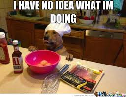Dog Cooking Meme - i ve always wanted to be a baker