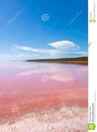 pink lake western australia royalty free stock images image