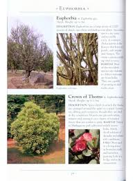 a naturalist u0027s guide to the trees u0026 shrubs of india pakistan