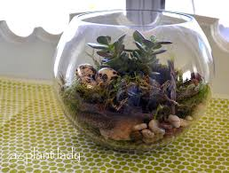 diy projects for the home how to make a terrarium terrariums are a great way to express your creativity from the type of container to the plants you select the possibilities are almost endless