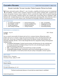executive resumes examples combination sample resume executive
