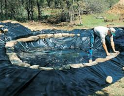 How To Build A Pond In Your Backyard by Garden Design Garden Design With Customers Garden Pond Pictures