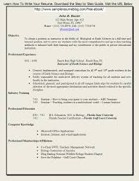 sample resume for faculty position resume for your job application