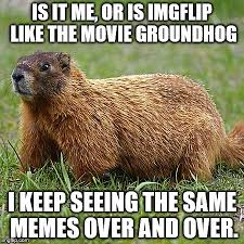 Groundhog Meme - is it me or is imgflip like the movie groundhog i keep seeing the