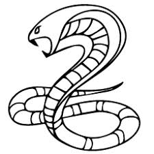 top 25 free printable snake coloring pages online