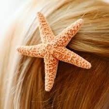 starfish hair clip hinterland trading sugar starfish bridal veil hair