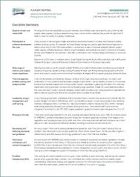 resume summary of qualifications leadership styles this is writing a resume summary writing a resume summary to write