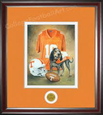 College Team Rugs Tennessee Vols College Team Rugs Collegiate Mascot Rug Are