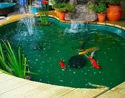 membuat filter aquarium kecil cara membuat filter kolam ikan koi desain kolam koi kedalaman kolam