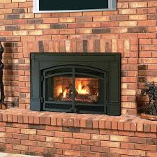 Contemporary Gas Fireplace Insert by Contemporary Gas Fireplace Inserts U2014 Jburgh Homes What You Need