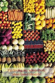 food plant based diet what is it