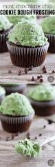 mint chocolate chip cookie dough frosting taste and tell