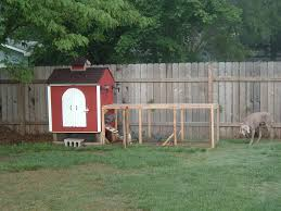 backyard chicken coop diy with easy to clean backyard suburban