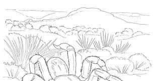 coloring pages desert colouring pages coloring desert colouring
