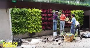 Best Plants For Vertical Garden - cara de planta is a diy kit that lets you build your own vertical