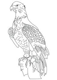 eagle marine corps coloring pages printable us emblem page