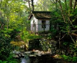 forest house house jigsaw puzzle