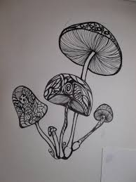 drawn mushroom psychedelic mushroom pencil and in color drawn
