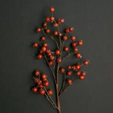fall berry stem magnolia market chip u0026 joanna gaines