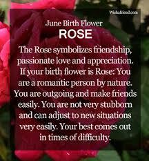 June Flower Tattoos - june birth flower rose annie u0027s favorite flowers are roses