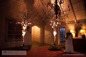 wedding arches with lights the bouquet inspiring wedding event florals