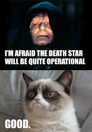 Angry Cat No Meme - images of grumpy cat start wars star wars grumpy cat meme no 4