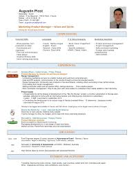 Sample Resume Product Manager Sales Resume Sample