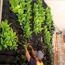 Vertical Garden For Balcony - customized order vertical garden planter bags for quotation only