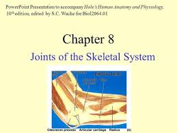 Holes Human Anatomy And Physiology 13th Edition Powerpoint Lecture Outlines To Accompany Hole U0027s Human Anatomy And