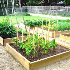 Garden Layout Software Vegetable Garden Layout Design Software Best Source Information