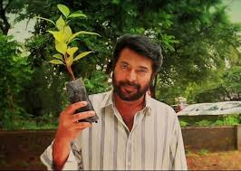 mathrubhumi readmore mamootty s my tree challenge going viral