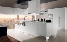 Italian Kitchen Cabinet Stunning Concept Amiable Cabinet Inserts Kitchen Tags