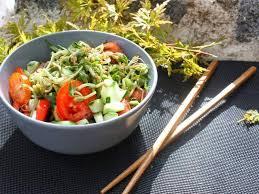comment cuisiner les pousses de soja recettes végétariennes de germes de soja
