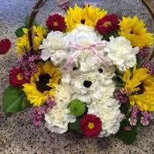 dog flower arrangement sabrinas flowers gifts 15 reviews florists 1903 s goliad