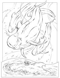 coloring book animals j to z pilot whale and coloring books
