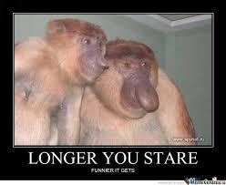 Baboon Meme - dick nosed monkey by ben meme center