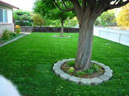 Sod Estimate by Estimates Sod And Seed